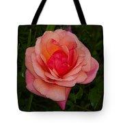 Rose 13 Tote Bag
