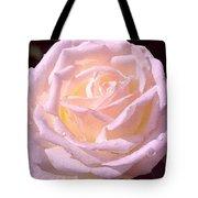 Rose 169 Tote Bag