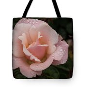 Rose And Rain - Pale Pink Raindrops Tote Bag