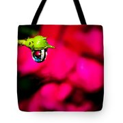 Rose Bud After Rain Tote Bag
