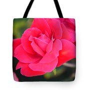 Rose Bush Tote Bag