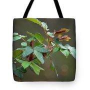 Rose Bush Rain Tote Bag