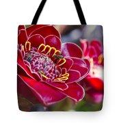 Rose De Porcelaine Tote Bag