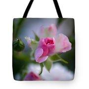 Rose Emergent Tote Bag
