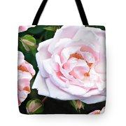 Rose Encounters Tote Bag
