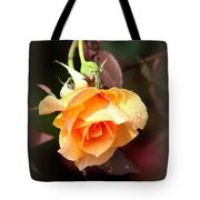 Rose - Flower - Card Tote Bag