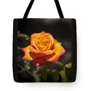 Rose Glow Tote Bag