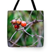 Rose Hip Wet Tote Bag