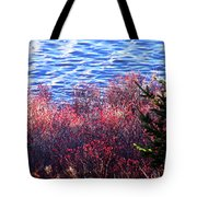 Rose Hips By The Seashore Tote Bag