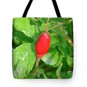 Rose Hips Tote Bag