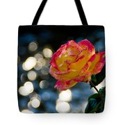 Rose In Dappled Afternoon Light Tote Bag