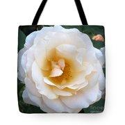 Rose In The Garden Tote Bag