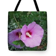 Rose Mallow Tote Bag