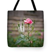 Rose Of Independence Tote Bag