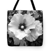Rose Of Sharon - Detail B N W Tote Bag