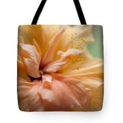Rose Of Sharon. Hibiscus Tote Bag