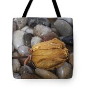 Rose On The Rocks Tote Bag