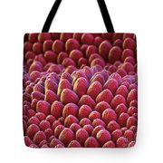Rose Petal Surface Sem Tote Bag