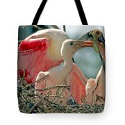 Roseate Spoonbill Feeding Young At Nest Tote Bag