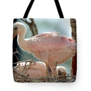 Roseate Spoonbill Nestlings Tote Bag