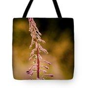 Rosebay Willowherb Tote Bag
