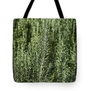 Rosemary Forest Tote Bag