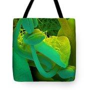 Rosemary Sem Tote Bag