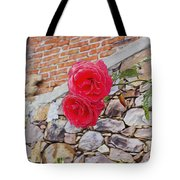 Roses Against The Wall Tote Bag