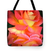 Roses Of Many Colors Tote Bag