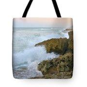 Ross Witham Beach Hutchinson Island Martin County Florida Tote Bag