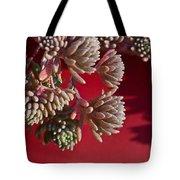 Rosy Sedum 5 Tote Bag