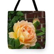 Rosy Sunshine Tote Bag