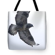 Rough-legged Hawk In Flight-signed-#4313 Tote Bag