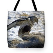Rough-legged Hawk On A Mule Deer Kill Tote Bag