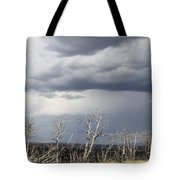 Rough Skys Over Colorado Plateau Tote Bag