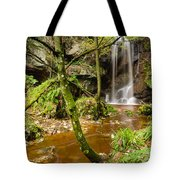 Roughting Linn Waterfall Tote Bag
