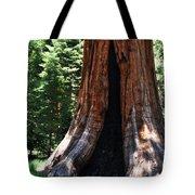 Round Meadow Giant Sequoia Portrait Tote Bag