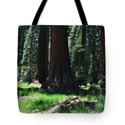 Round Meadow Sequoia Family Tote Bag