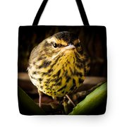 Round Warbler Tote Bag
