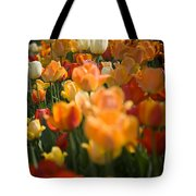 Row Of Colorful Tulips Tote Bag