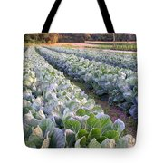 Row Two Tote Bag