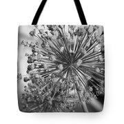 Rows Of Architecture  Tote Bag
