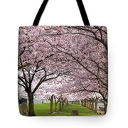 Rows Of Cherry Blossom Trees In Bloom Tote Bag