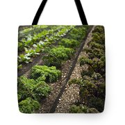 Rows Of Kale Tote Bag