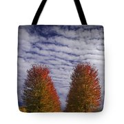 Rows Of Red Autumn Trees With Cirus Clouds Tote Bag