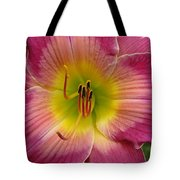 Royal Heritage Daylily Face Tote Bag