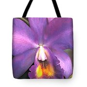 Royal Purple Cattleya Orchid Tote Bag