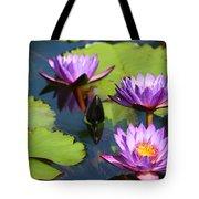 Royal Purple Water Lilies Tote Bag