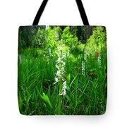 Royal Rain Orchid Tote Bag