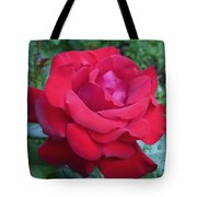 Royal Velvet Tote Bag